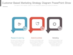 Customer Based Marketing Strategy Diagram Powerpoint Show
