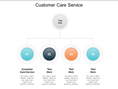 Customer Care Service Ppt PowerPoint Presentation Infographic Template Professional Cpb