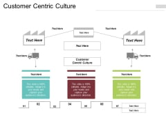 Customer Centric Culture Ppt PowerPoint Presentation Layouts Styles Cpb