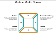 Customer Centric Strategy Ppt PowerPoint Presentation Model Good Cpb