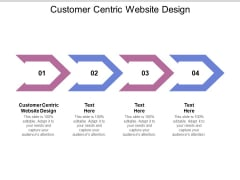 Customer Centric Website Design Ppt PowerPoint Presentation Pictures Visual Aids Cpb