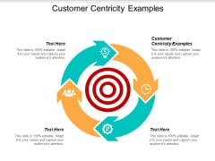 Customer Centricity Examples Ppt PowerPoint Presentation Icon Styles Cpb