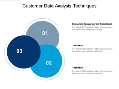 Customer Data Analysis Techniques Ppt PowerPoint Presentation Portfolio Graphics Pictures Cpb