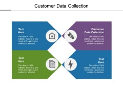 Customer Data Collection Ppt PowerPoint Presentation File Samples Cpb
