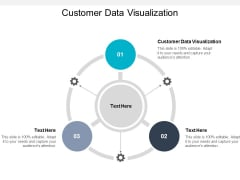 Customer Data Visualization Ppt PowerPoint Presentation Model Templates Cpb