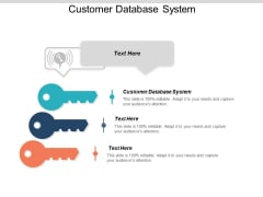 Customer Database System Ppt PowerPoint Presentation Summary Elements Cpb
