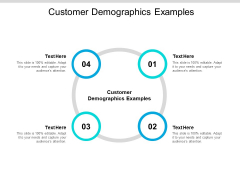 Customer Demographics Examples Ppt PowerPoint Presentation Inspiration Elements Cpb