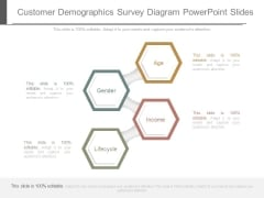 Customer Demographics Survey Diagram Powerpoint Slides