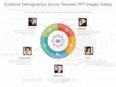 Customer Demographics Survey Template Ppt Images Gallery