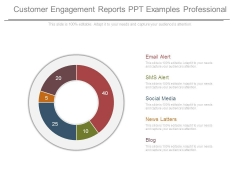 Customer Engagement Reports Ppt Examples Professional