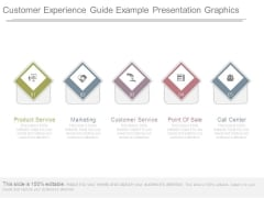 Customer Experience Guide Example Presentation Graphics
