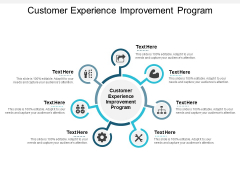 Customer Experience Improvement Program Ppt PowerPoint Presentation Model Gridlines Cpb
