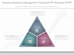 Customer Experience Management Framework Ppt Example Of Ppt