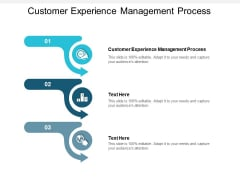Customer Experience Management Process Ppt PowerPoint Presentation Model Infographics Cpb