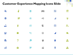 Customer Experience Mapping Icons Slide Ppt PowerPoint Presentation Styles Graphics Example