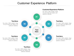 Customer Experience Platform Ppt PowerPoint Presentation Slides Images Cpb