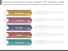 Customer Experience Process Diagram Ppt Examples Slides