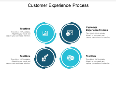 Customer Experience Process Ppt PowerPoint Presentation Model Slides Cpb