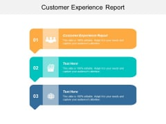 Customer Experience Report Ppt Powerpoint Presentation Infographics Professional Cpb