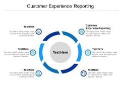 Customer Experience Reporting Ppt PowerPoint Presentation Portfolio Shapes Cpb