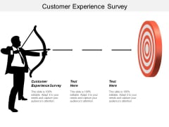 Customer Experience Survey Ppt PowerPoint Presentation Show Microsoft Cpb