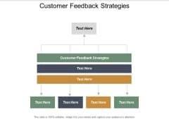 Customer Feedback Strategies Ppt PowerPoint Presentation Infographic Template Graphics Pictures Cpb