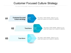 Customer Focused Culture Strategy Ppt PowerPoint Presentation Styles Graphics Tutorials Cpb