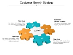 Customer Growth Strategy Ppt PowerPoint Presentation Professional Images Cpb