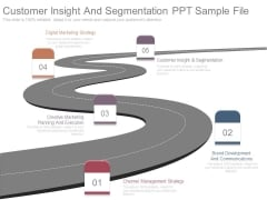 Customer Insight And Segmentation Ppt Sample File