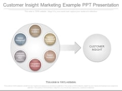 Customer Insight Marketing Example Ppt Presentation