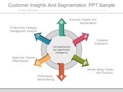 Customer Insights And Segmentation Ppt Sample
