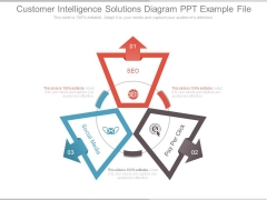 Customer Intelligence Solutions Diagram Ppt Example File