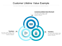 Customer Lifetime Value Example Ppt PowerPoint Presentation Layouts Clipart Images Cpb