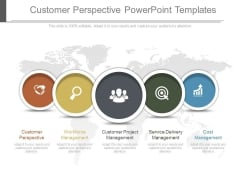 Customer Perspective Powerpoint Templates