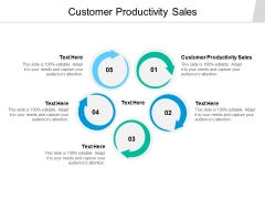 Customer Productivity Sales Ppt PowerPoint Presentation Infographic Template Example File Cpb