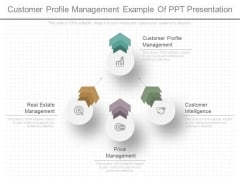 Customer Profile Management Example Of Ppt Presentation