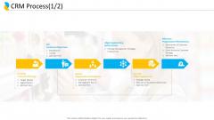 Customer Relationship Management CRM Process Strategy Ppt Portfolio Portrait PDF