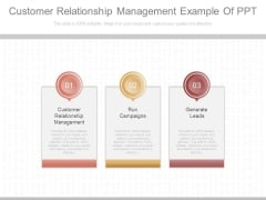 Customer Relationship Management Example Of Ppt