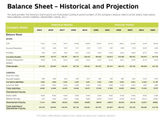 Customer Relationship Management In Freehold Property Balance Sheet Historical And Projection Icons PDF