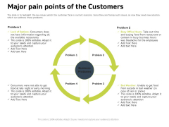 Customer Relationship Management In Freehold Property Major Pain Points Of The Customers Rules PDF