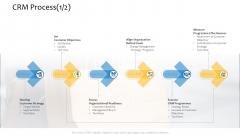 Customer Relationship Management Procedure CRM Process Strategy Ppt Professional Portfolio PDF