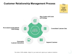 Customer Relationship Management Process Ppt PowerPoint Presentation Slides Example