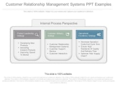 Customer Relationship Management Systems Ppt Examples