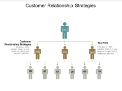 Customer Relationship Strategies Ppt PowerPoint Presentation Gallery Professional Cpb