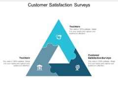 Customer Satisfaction Surveys Ppt Powerpoint Presentation Show Shapes Cpb