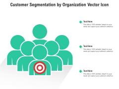 Customer Segmentation By Organization Vector Icon Ppt PowerPoint Presentation Gallery Examples PDF