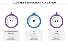 Customer Segmentation Case Study Ppt PowerPoint Presentation Styles Graphics Design Cpb Pdf