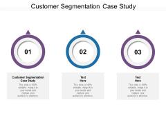Customer Segmentation Case Study Ppt PowerPoint Presentation Styles Graphics Design Cpb Pdf