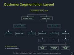 Customer Segmentation Layout Ppt PowerPoint Presentation Ideas Outfit