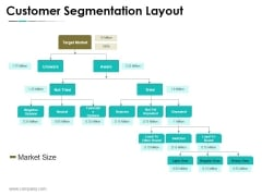 Customer Segmentation Layout Ppt PowerPoint Presentation Infographic Template Picture